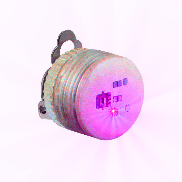 Pink Steady Clip Button Body Lights All Products