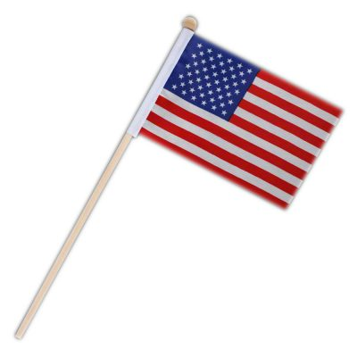 Non Light Up US American Flag on Stick 4th of July